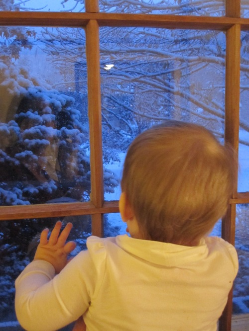 Baby's first snow